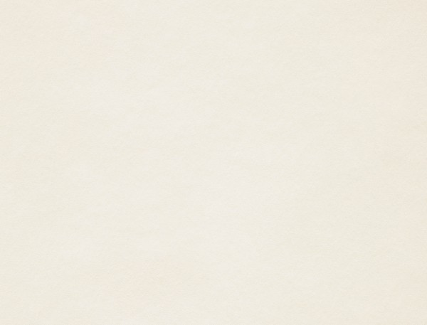 Giấy mỹ thuật Conqueror Bamboo Natural White | Wings Paper