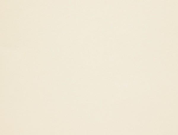 Giấy mỹ thuật Conqueror Iridescent Golden Haze | Wings Paper