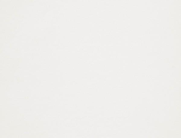 Giấy mỹ thuật Conqueror Wove Brilliant White | Wings Paper